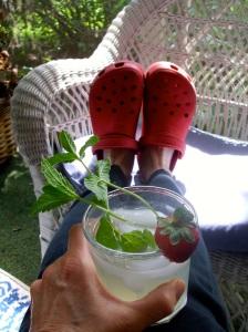 summer starts here lemonade