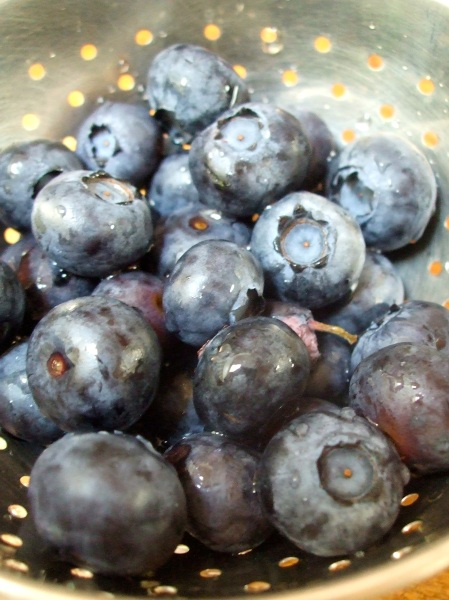 fat and sassy blueberries