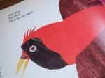red bird carle