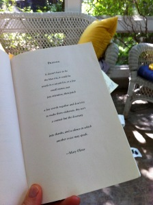 mary oliver poem