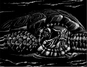 painted turtle from all creation waits