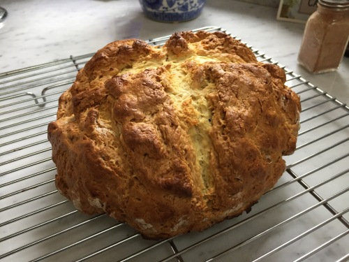 shannon soda bread